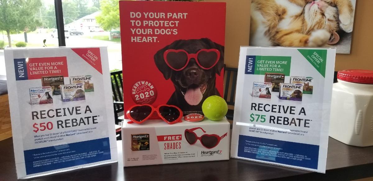 Best Dog Flea Medicine 2020 Michigan Road Animal Hospital at 96th Street   Veterinarian in